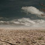 メコン川の水位は危機的状況は脱するも生態系にまで影響する可能性