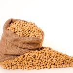 パーム油と大豆油の乖離に注目